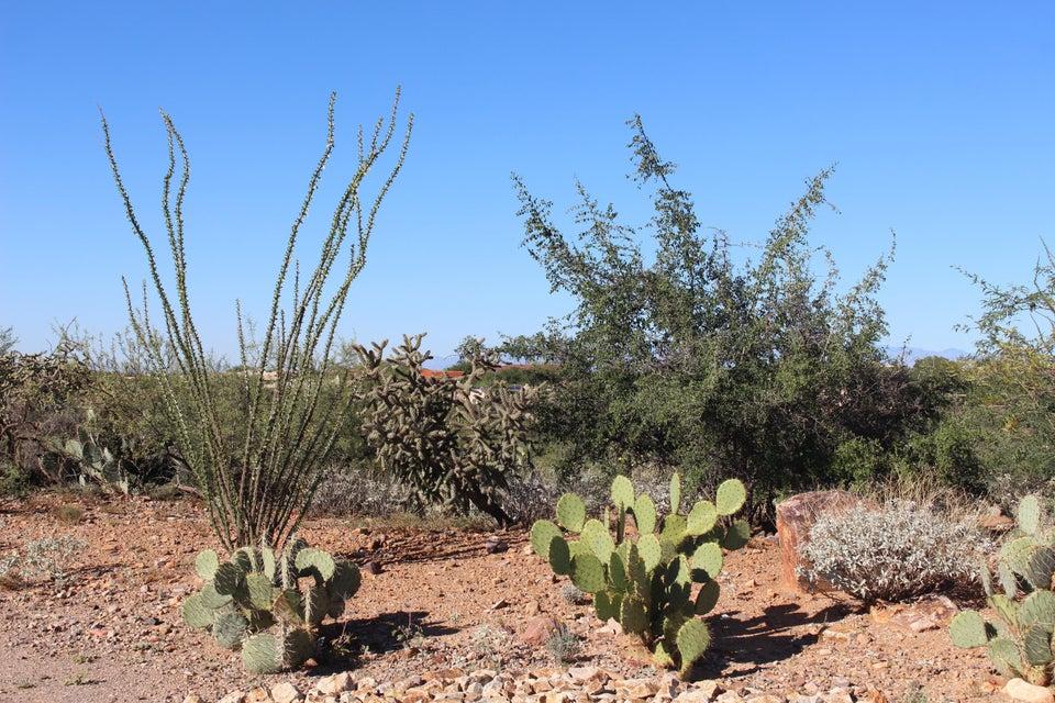 973 E Sylvester Spring Place, Green Valley, AZ 85614