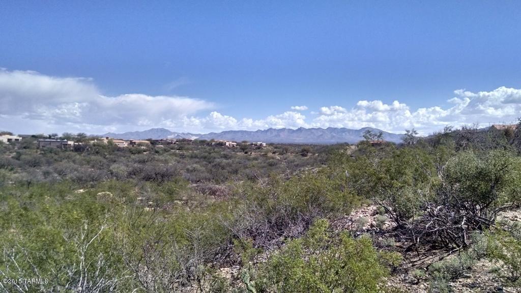817 E Sylvester Spring Place, Green Valley, AZ 85614