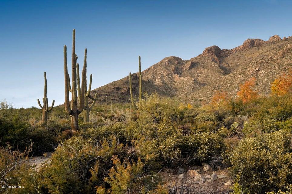 8005 N Barrel Cactus N Drive, Tucson, AZ, 85718 Primary Photo