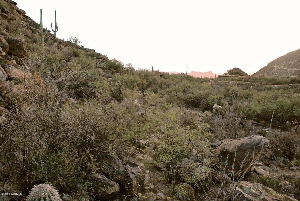 14574 N Dove Canyon Pass, Marana, AZ 85658