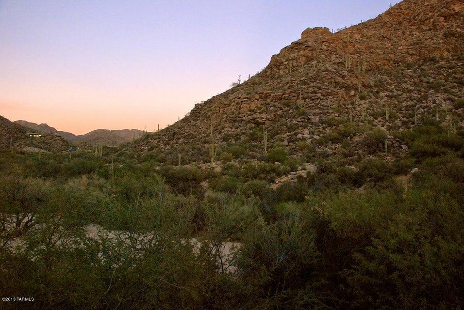 14562 N Dove Canyon Pass, Marana, AZ 85658