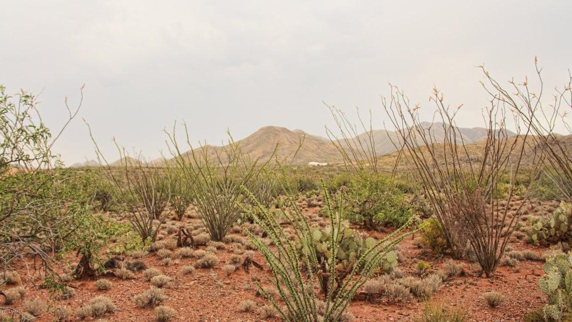 Ocotillo Rim Trail N, Vail, AZ 85641