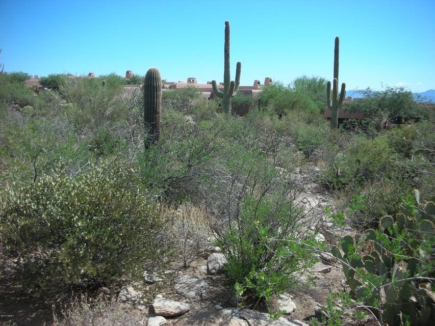 5187 W Gallery Canyon Place, Marana, AZ 85658