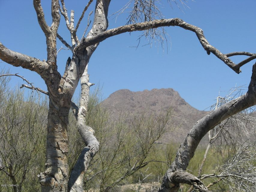 4528 W Butterfly Mountain Drive, Marana, AZ 85658