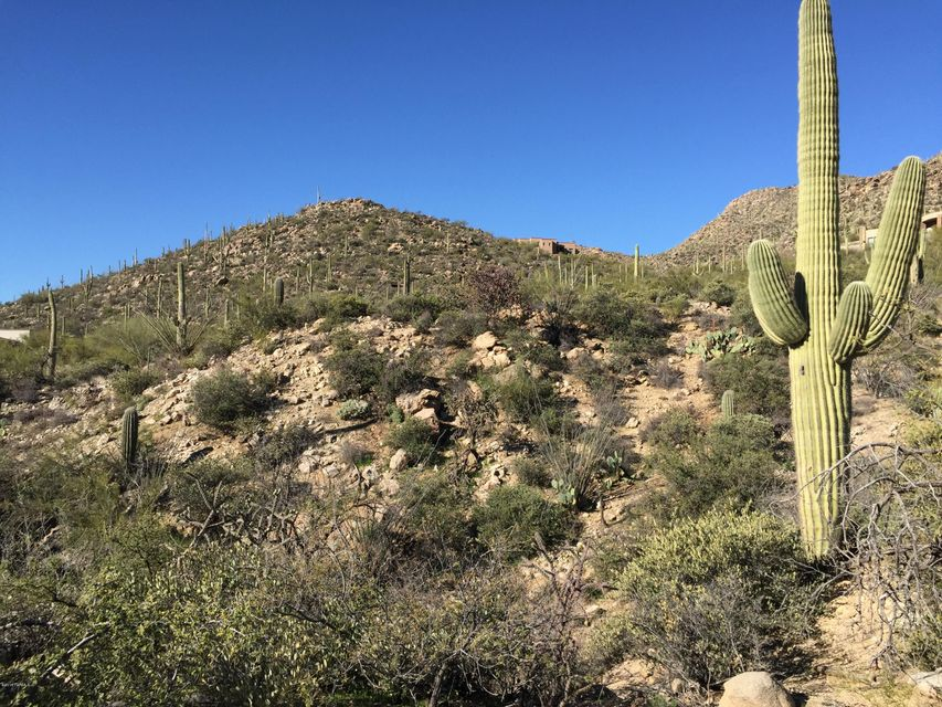 4156 W Cayton Mountain Drive, Marana, AZ 85658