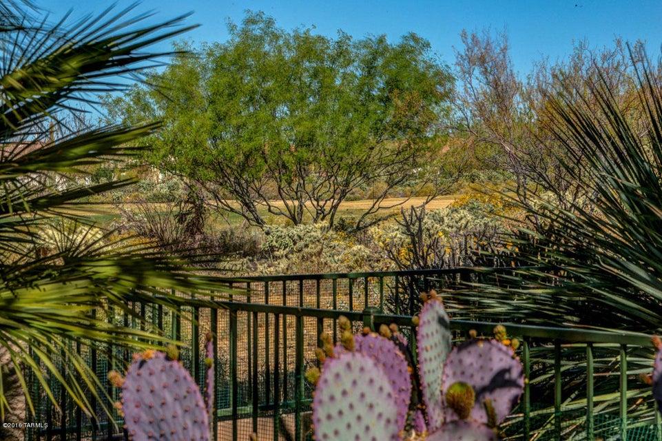 13397 N Sunset Mesa Drive, Marana, AZ 85658