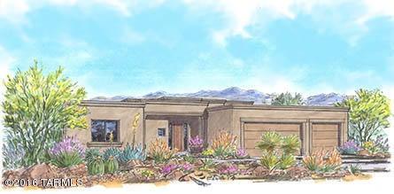 9413 E Desert Milkweed Court, Vail, AZ 85641
