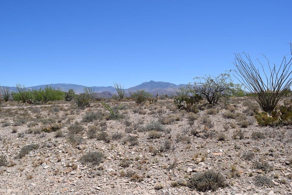 14449 E Sands Ranch Road, Vail, AZ 85641