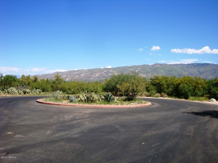 15167 E Double Bar Ranch Place, Vail, AZ 85641