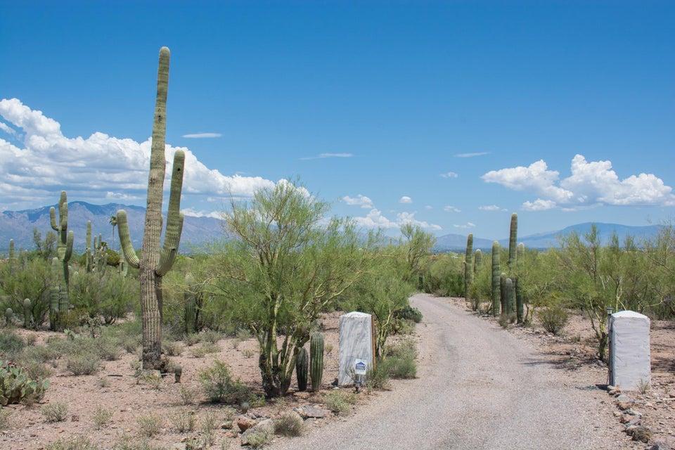 3120 N Camino De Oeste, Tucson, AZ 85745