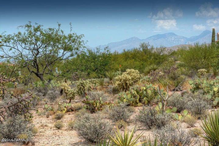 14751 E Triangle M Ranch Road, Vail, AZ 85641