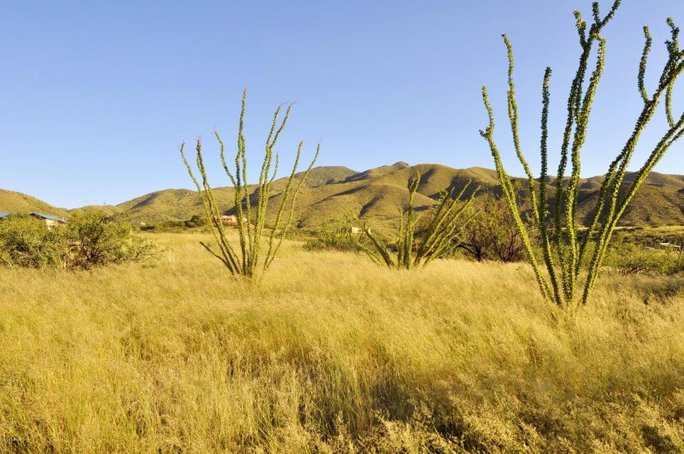 18115 S Via Del Minero, Vail, AZ 85641