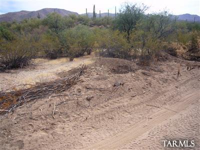 XX Cathy Lane 5AC, Marana, AZ 85658