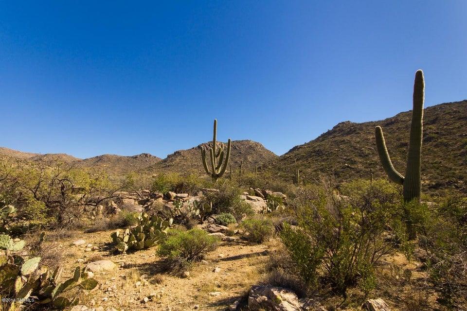 15165 Dove Canyon Ps N, Marana, AZ 85658