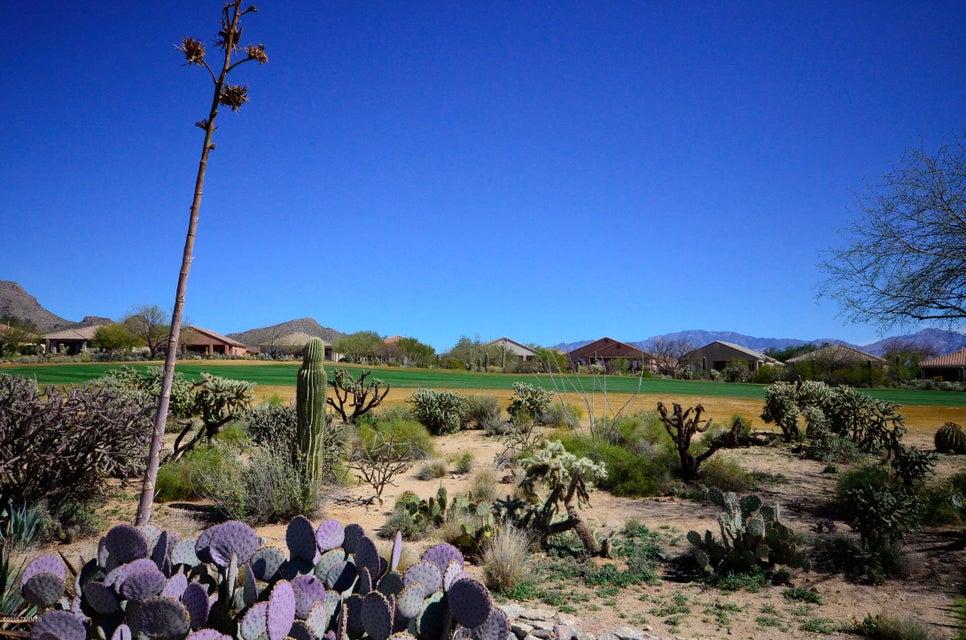 13070 N Desert Flora Lane, Marana, AZ 85658
