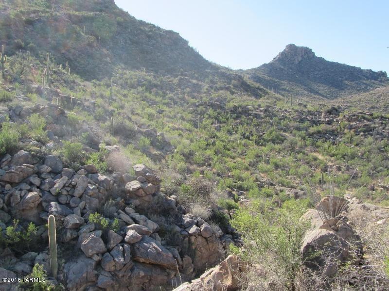15086 N Dove Canyon Pass N, Marana, AZ 85658