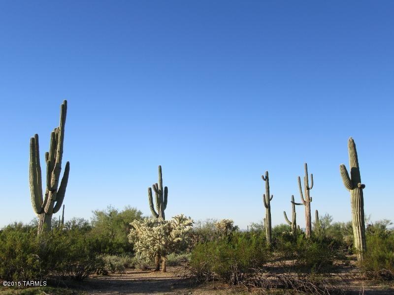 Future Road, Marana, AZ 85658