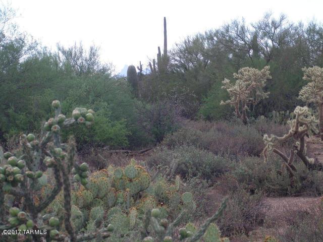 35110 E Park Links Drive, Marana, AZ 85658