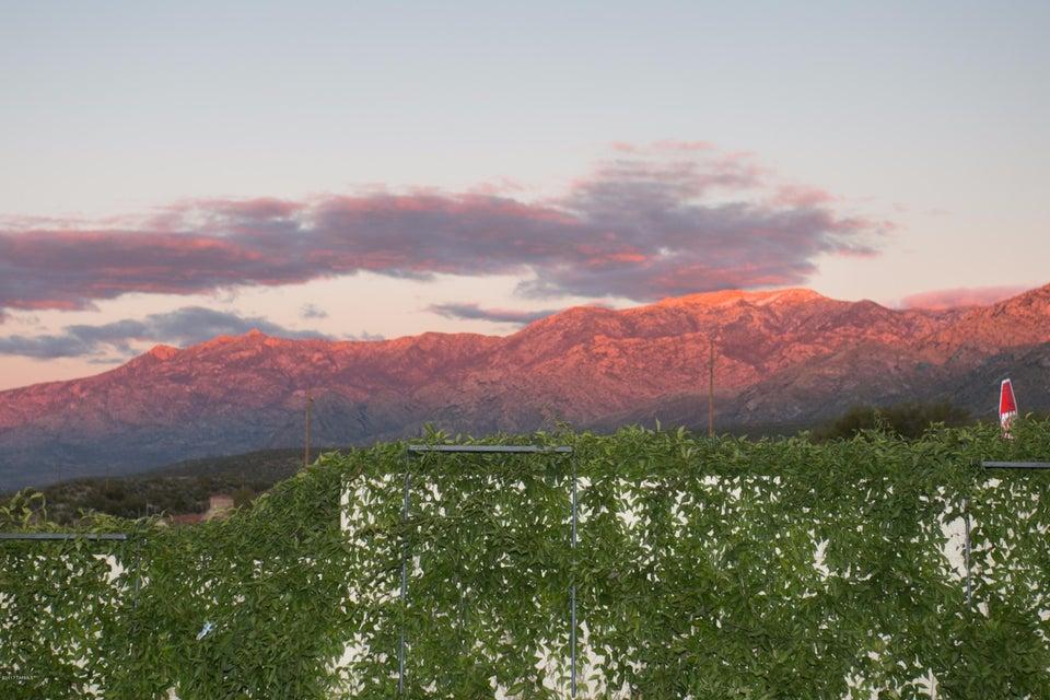 10000 N Roxbury Drive, Oro Valley, AZ 85737