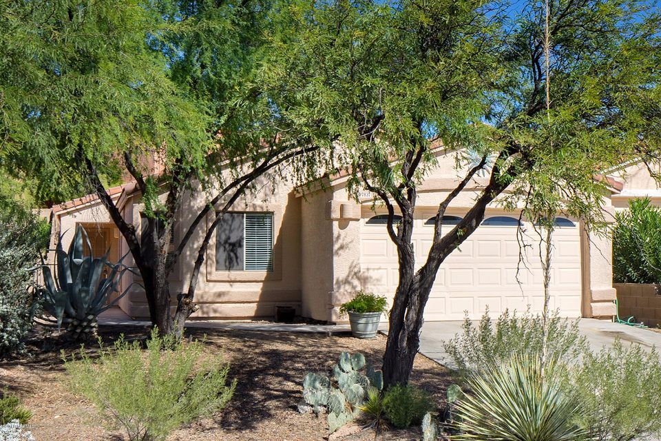 7837 E Sabino Hollow Court, Tucson, AZ 85750