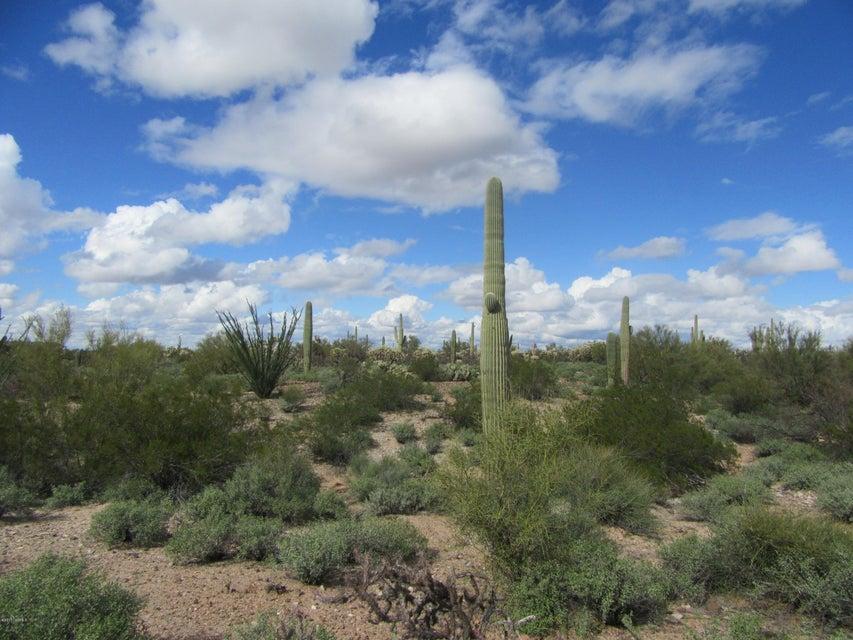 XXX Thornwood, Marana, AZ 85658