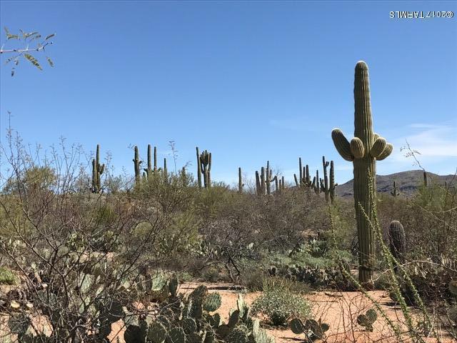 15573 E Hat Creek Ranch Place, Vail, AZ 85641