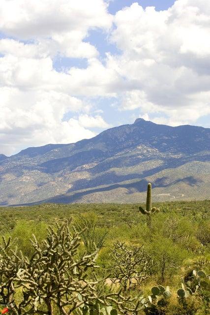 8887 S Anvil Ranch Place, Vail, AZ 85641