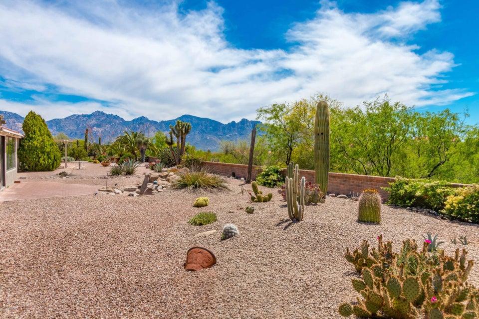 14331 N Alamo Canyon Drive, Oro Valley, AZ 85755