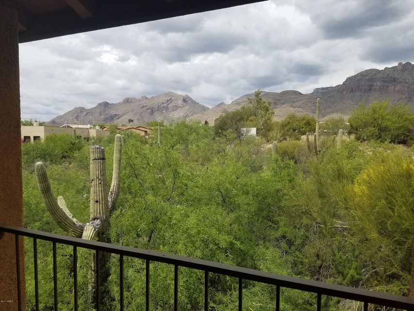 6651 N Campbell Avenue 255, Tucson, AZ 85718
