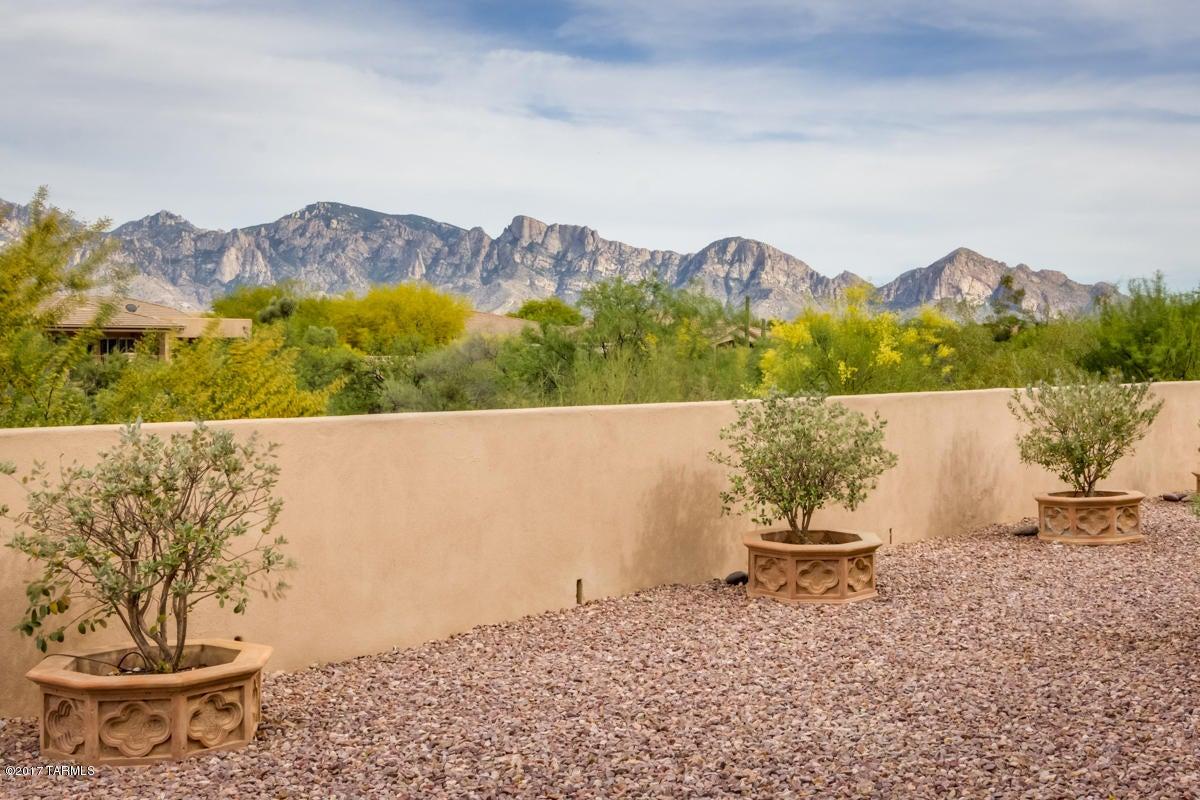 13898 N Bowcreek Springs Place, Oro Valley, AZ 85755