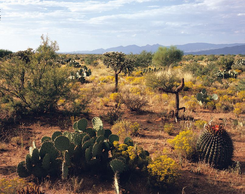 13407 S Sundown Ranch Road, Vail, AZ 85641
