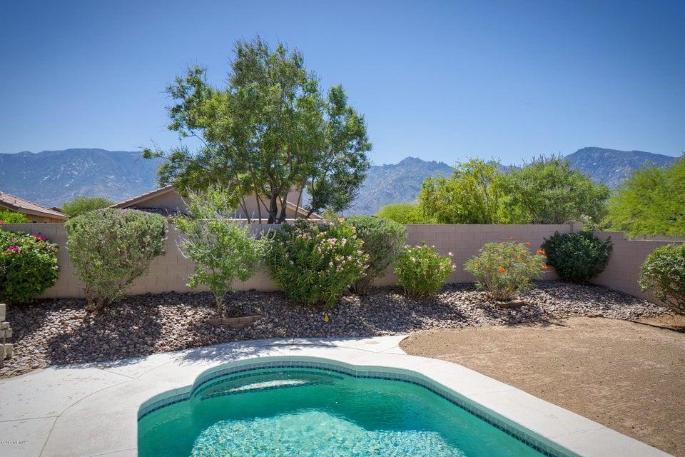 13218 N Mortar Pestle Court, Oro Valley, AZ 85755