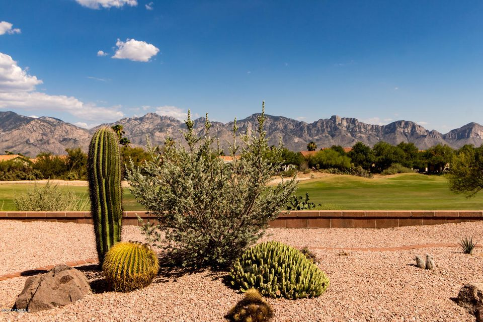 1368 E Mule Train Drive, Oro Valley, AZ 85755