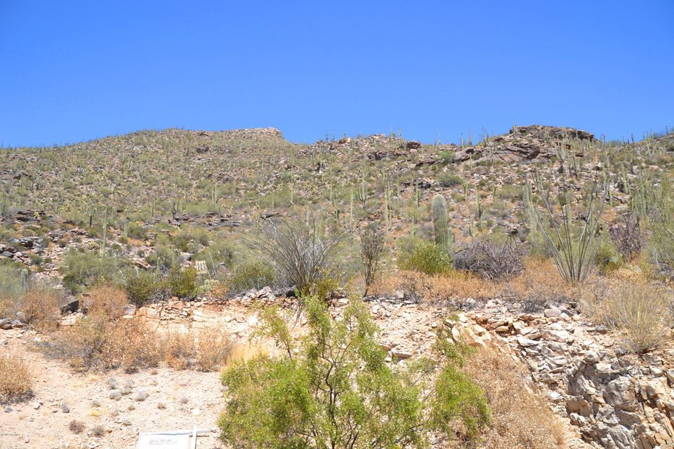 4150 W Horizon Ridge Drive, Marana, AZ 85658