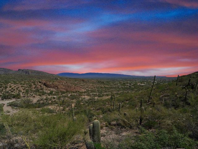6555 N Thimble Pass Tucson, AZ 85750