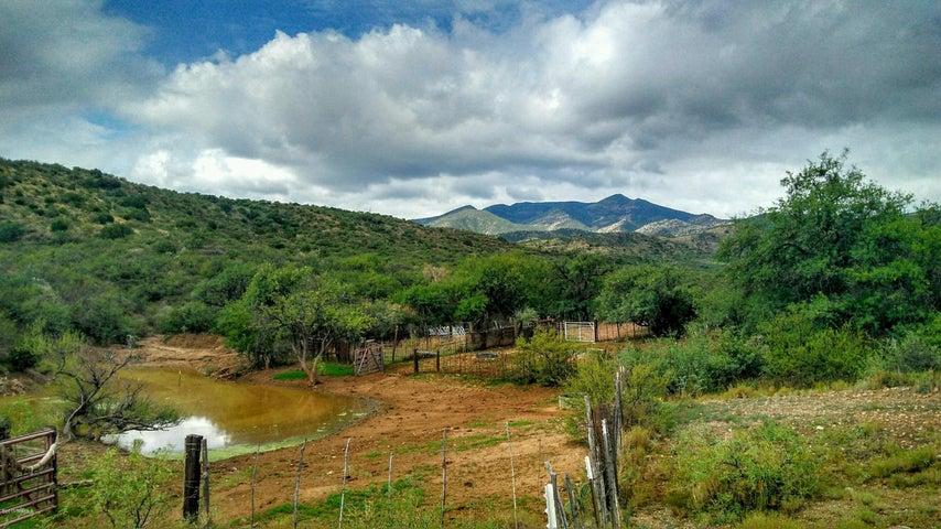 80955 E Rio Del Oro Road Oracle, AZ 85623