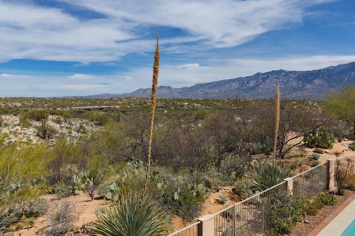 33 E Big Wash Place Oro Valley, AZ 85755