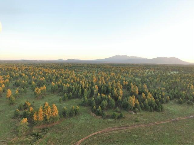 Tbd Forest Rd 9420n Flagstaff, AZ 86004