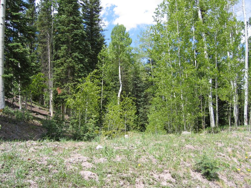 Additional photo for property listing at TBD Palmyra Drive TBD Palmyra Drive Mountain Village, Colorado,81435 Verenigde Staten