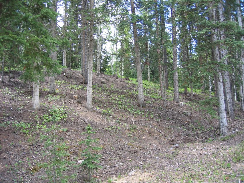 Additional photo for property listing at TBD Palmyra Drive TBD Palmyra Drive Telluride, Колорадо,81435 Соединенные Штаты