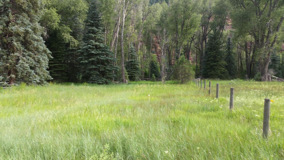 Additional photo for property listing at TBD HWY 145 TBD HWY 145 Placerville, Colorado,81430 Stati Uniti