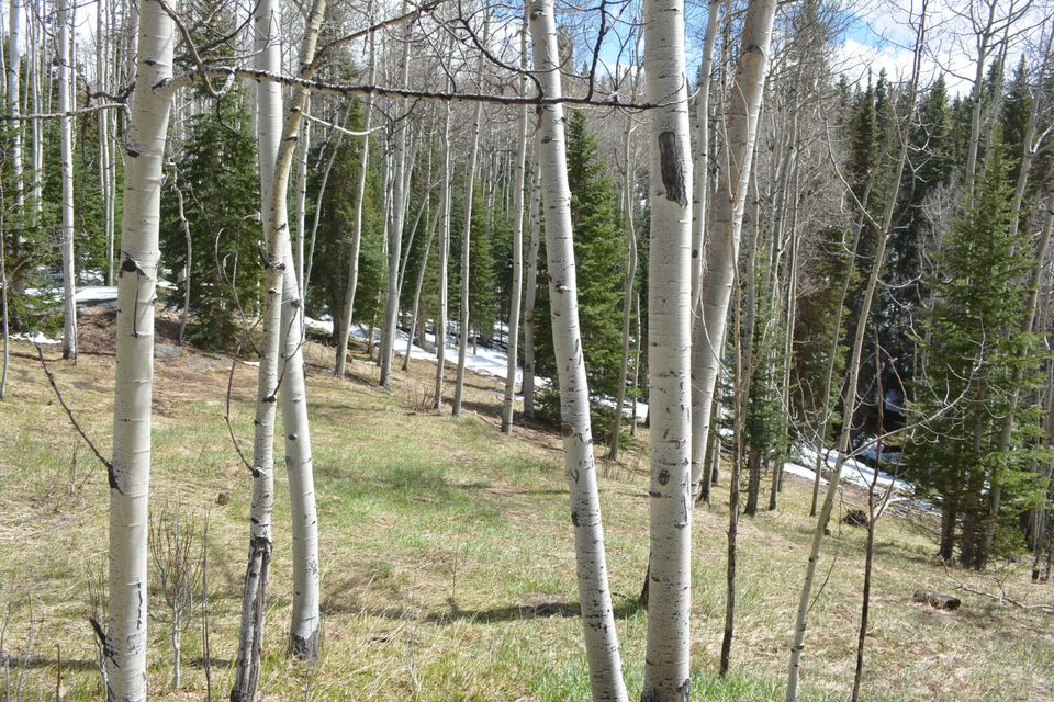 Additional photo for property listing at 40 MT WILSON Way  Telluride, Κολοραντο,81435 Ηνωμενεσ Πολιτειεσ