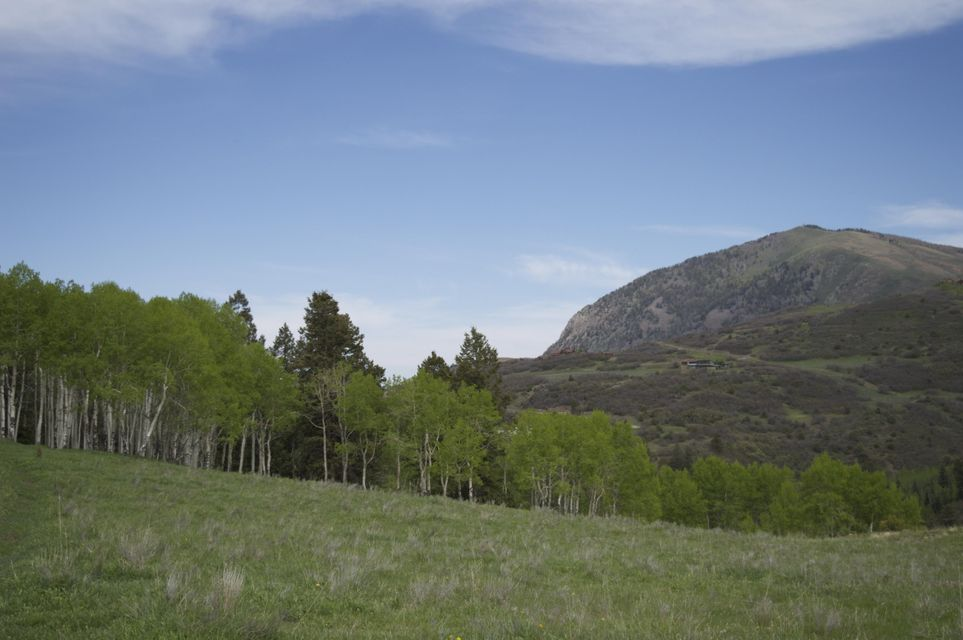 Additional photo for property listing at 5683 Last Dollar Road  Telluride, Colorado,81435 Estados Unidos