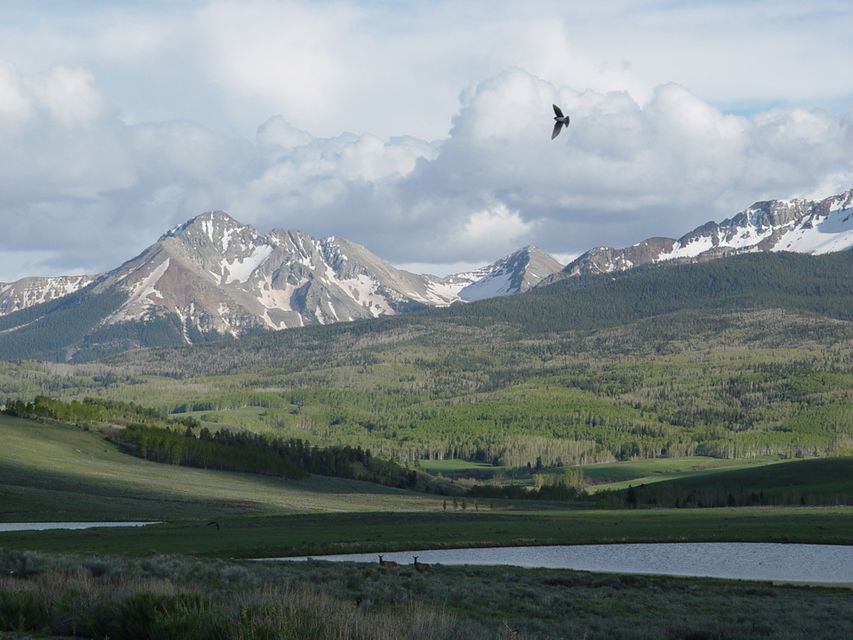 土地 / 的地塊 为 销售 在 Parcel CR Sound of Music Ranch 普莱斯威尔, 科罗拉多州,81430 美国