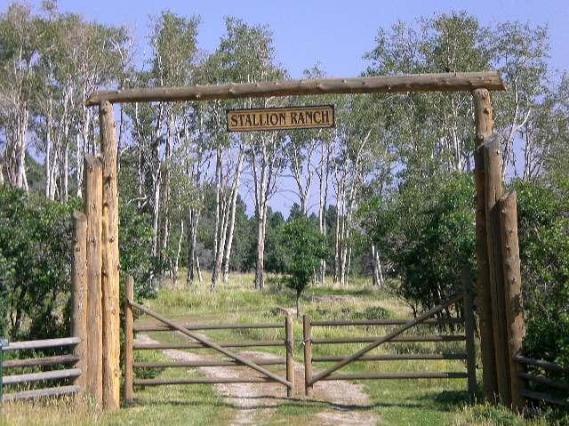 土地 / 的地塊 为 销售 在 390 Peninsula Drive 普莱斯威尔, 科罗拉多州,81430 美国
