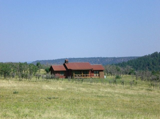 Additional photo for property listing at 390 Peninsula Drive  Placerville, Colorado,81430 Verenigde Staten