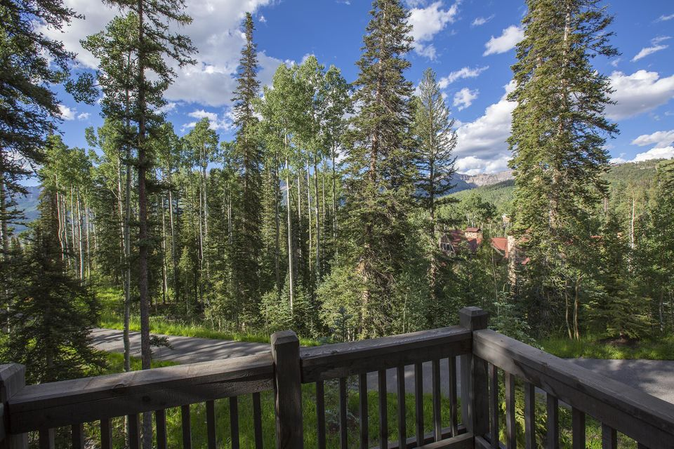 Additional photo for property listing at 114 Autumn Lane  Telluride, Colorado,81435 Hoa Kỳ