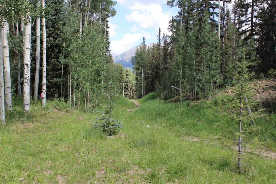Additional photo for property listing at tbd Prospect Creek Drive  Telluride, Colorado,81435 Estados Unidos