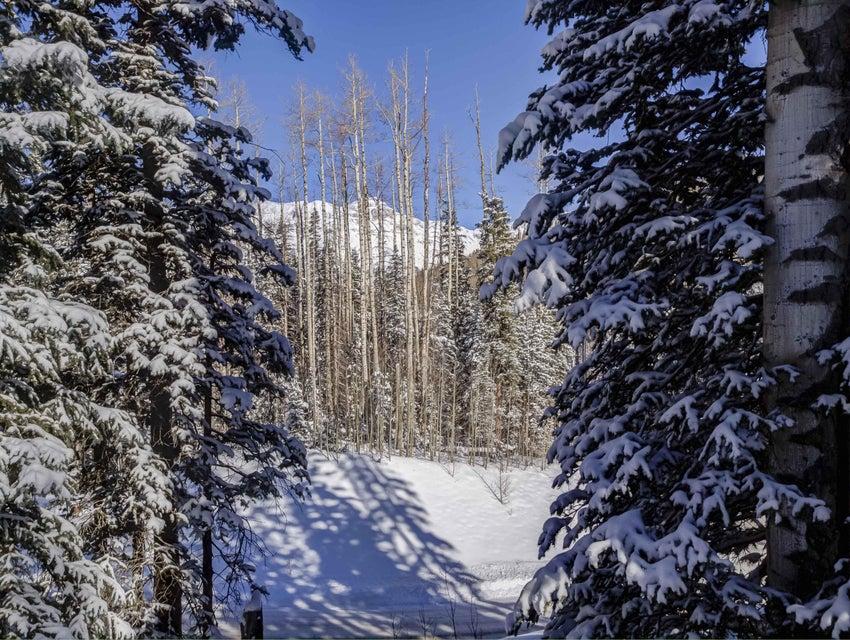 115  Cabins Lane, Mountain Village Colorado