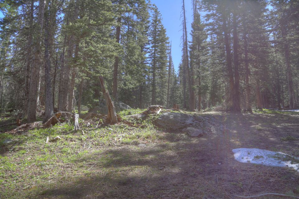 Additional photo for property listing at tbd FSR 57 tbd FSR 57 Rico, Colorado,81332 United States